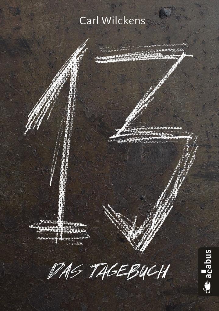 Dreizehn. Das Tagebuch. Band 1 als eBook epub
