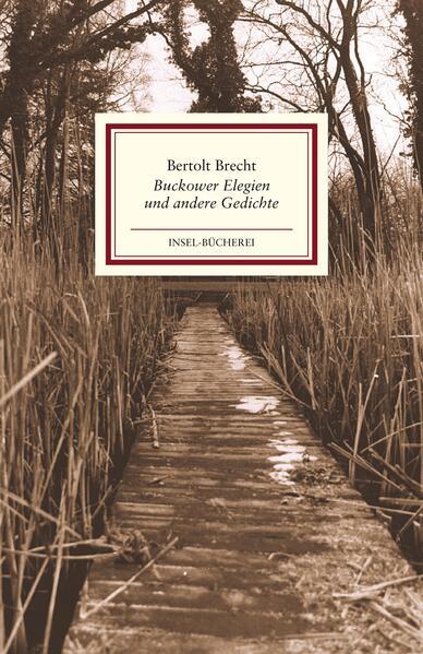 Buckower Elegien und andere Gedichte als Buch
