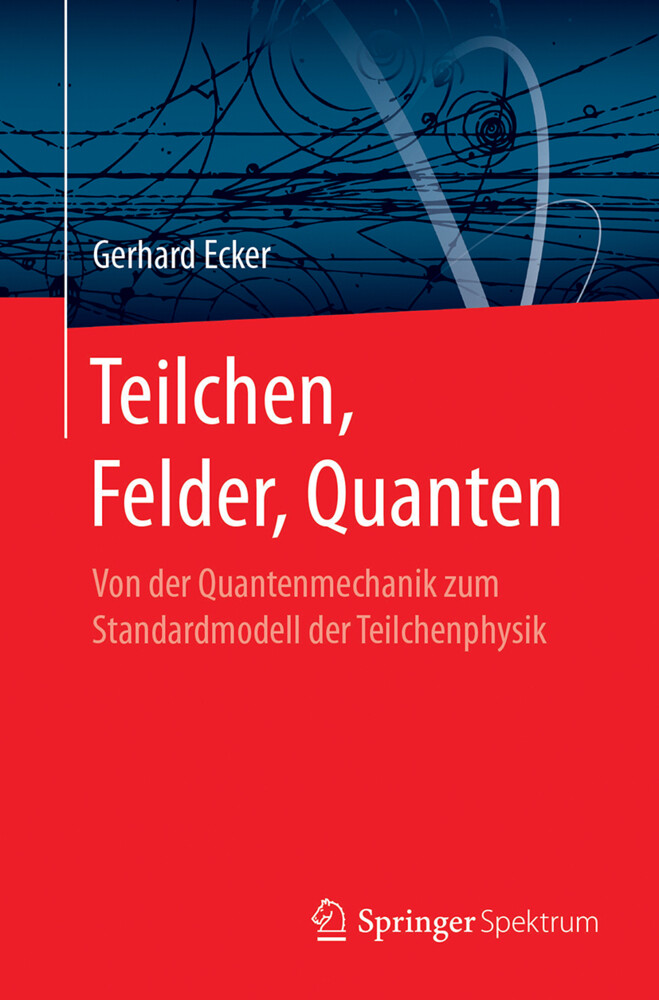 Teilchen, Felder, Quanten als Buch (kartoniert)