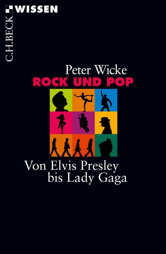 Rock und Pop als Taschenbuch