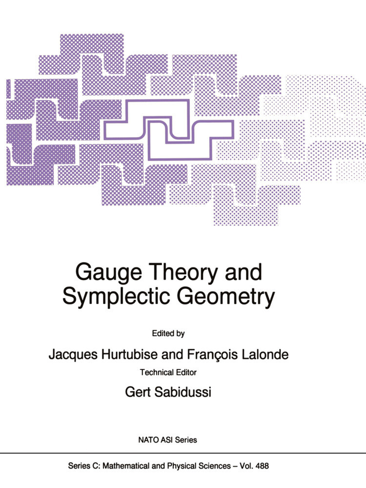 Gauge Theory and Symplectic Geometry als Buch (gebunden)