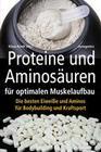 Proteine und Aminosäuren für optimalen Muskelaufbau