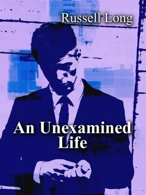 An Unexamined Life als eBook epub