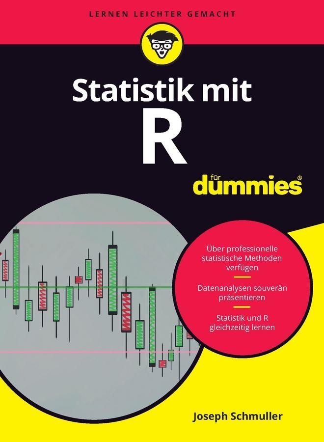 Statistik mit R für Dummies als eBook epub