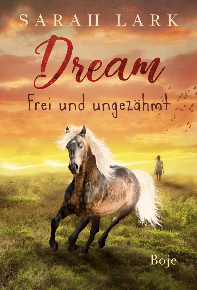 Dream - Frei und ungezähmt als Buch (gebunden)