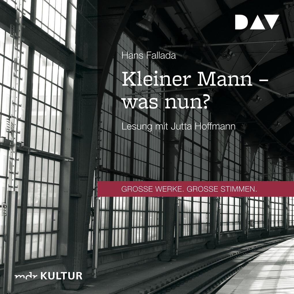 Kleiner Mann - was nun? als Hörbuch Download