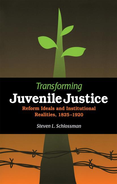Transforming Juvenile Justice: Reform Ideals and Institutional Realities, 1825-1920 als Taschenbuch