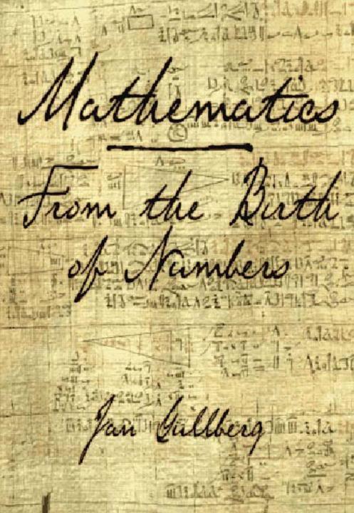 Mathematics: From the Birth of Numbers als Buch (gebunden)