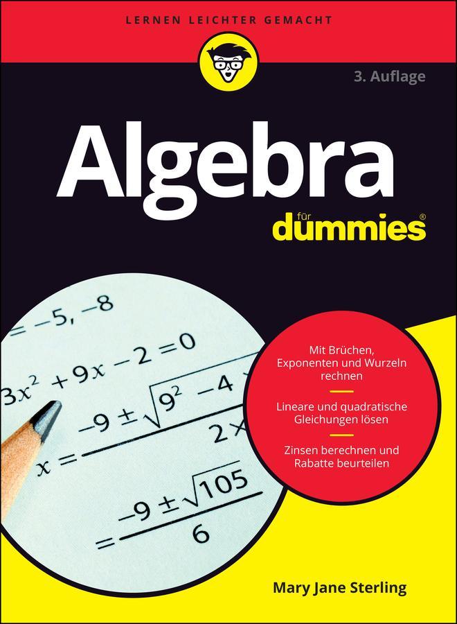 Algebra für Dummies als eBook epub