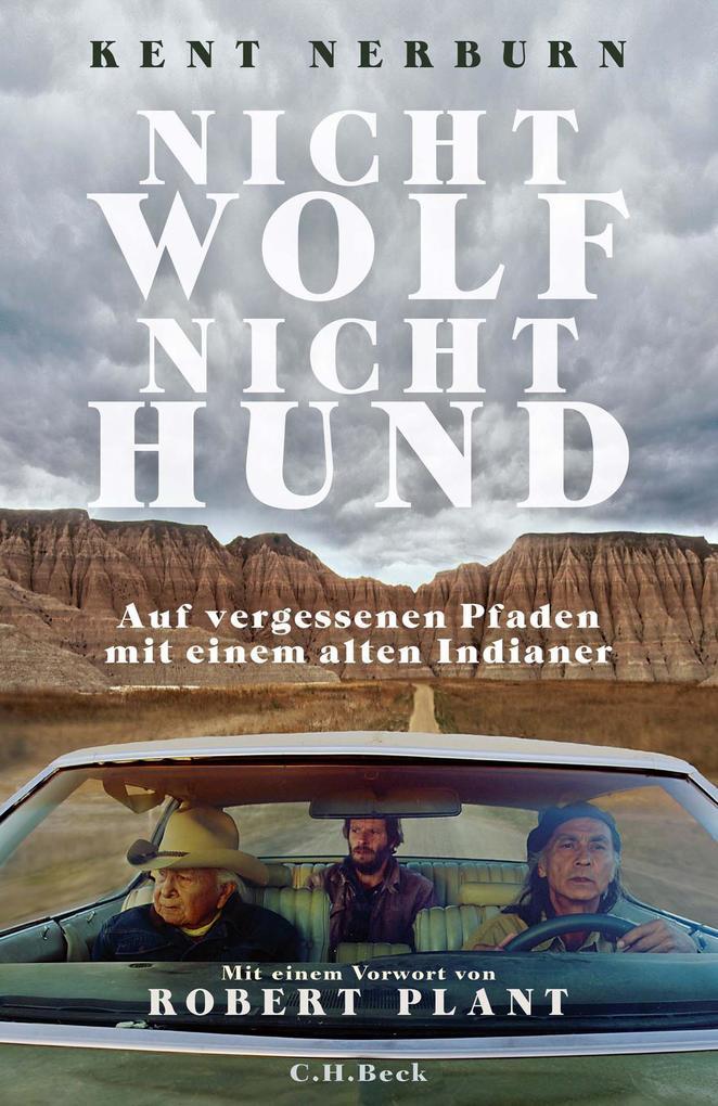 Nicht Wolf nicht Hund als eBook epub