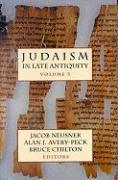 Judaism in Late Antiquity, I, II, III als Taschenbuch