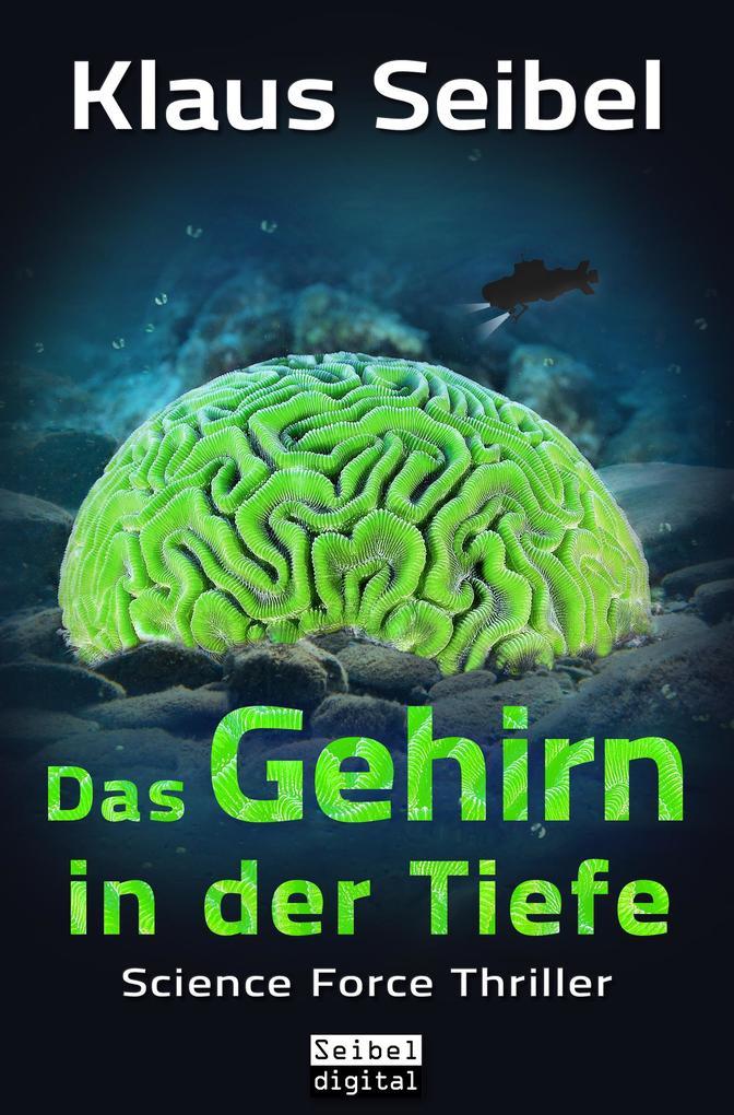 Das Gehirn in der Tiefe als eBook epub