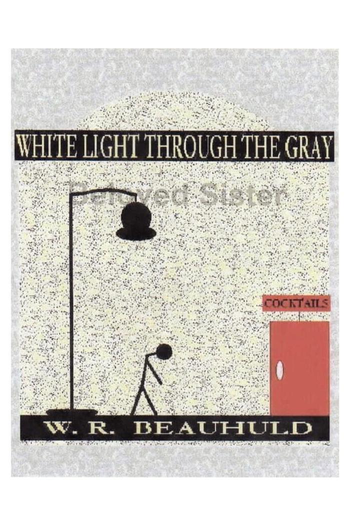 WHITE LIGHT THROUGH THE GRAY als Buch (gebunden)
