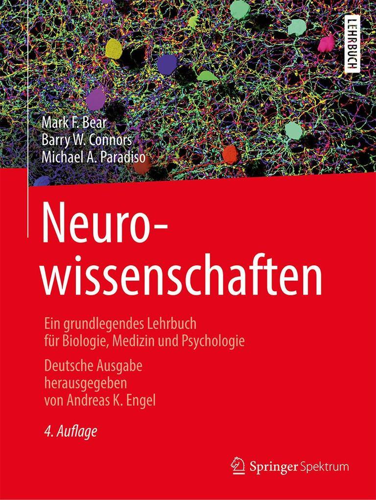 Neurowissenschaften als eBook pdf