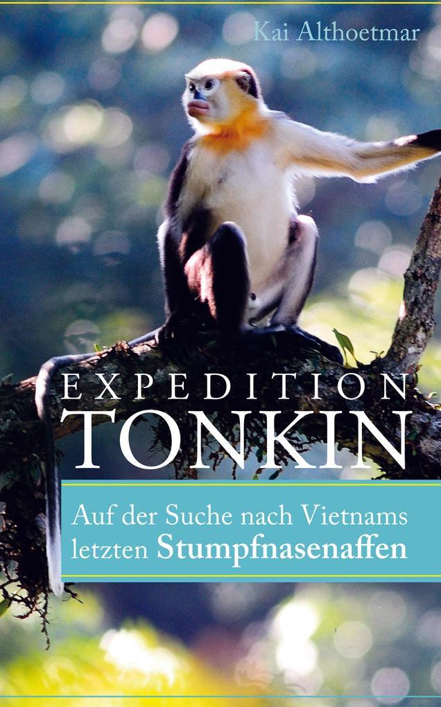 Expedition Tonkin als eBook epub