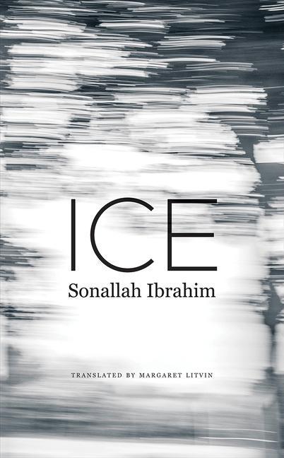 Ice als Buch (gebunden)
