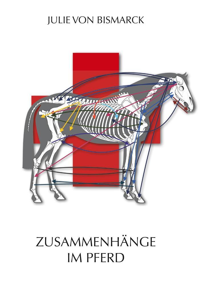 Zusammenhänge im Pferd als Buch (kartoniert)