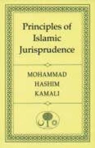 Principles of Islamic Jurisprudence als Taschenbuch