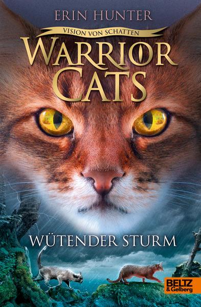 Warrior Cats Staffel 6/06 - Vision von Schatten. Wütender Sturm als Buch (gebunden)