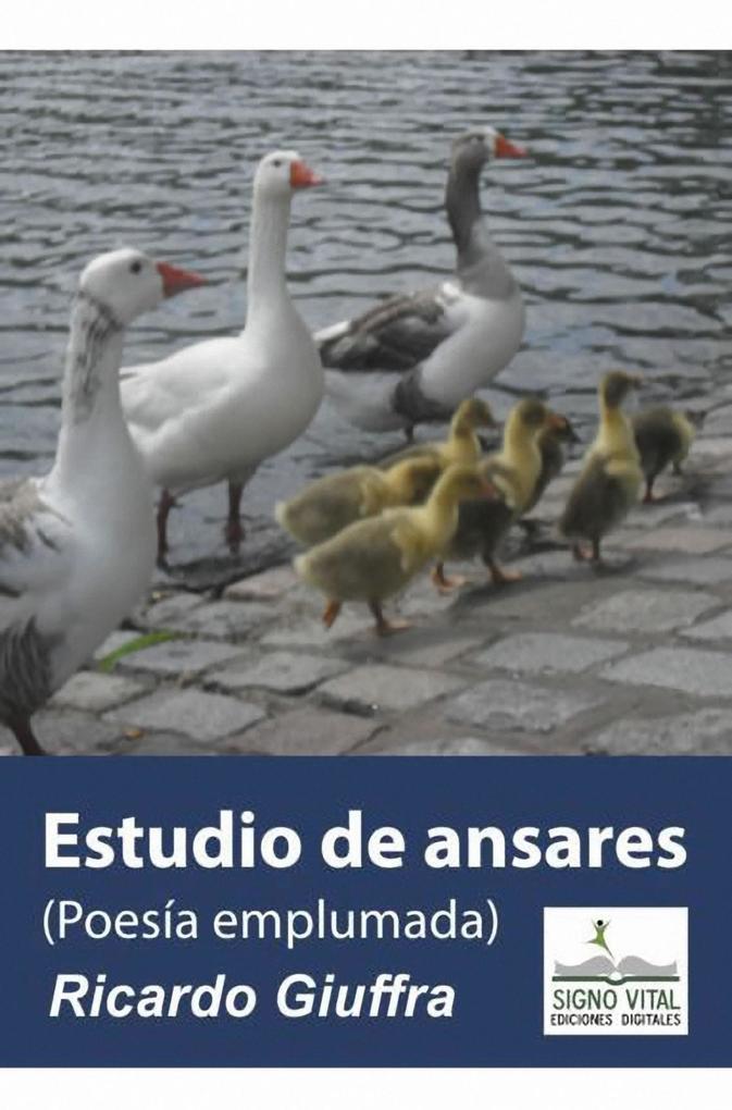 Estudio de Ansares als eBook epub