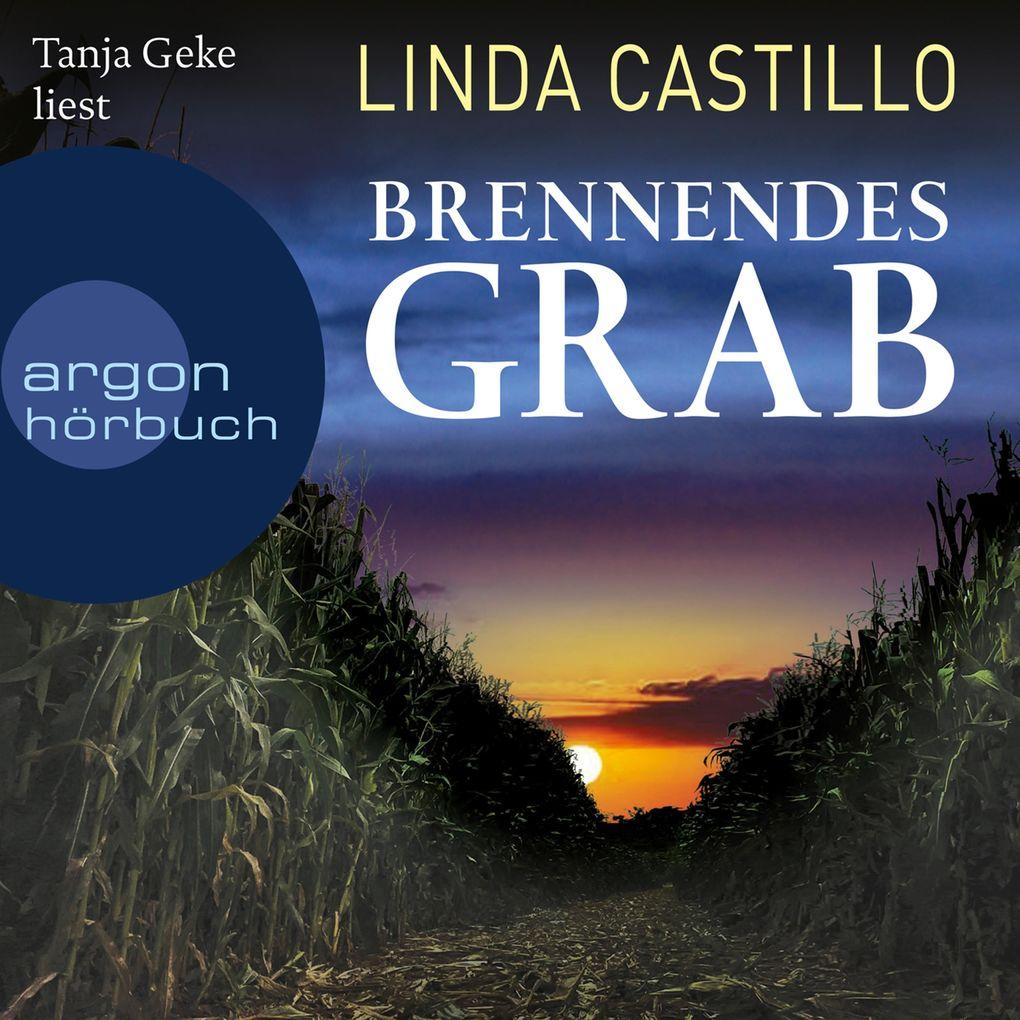 Brennendes Grab (Gekürzte Lesung) als Hörbuch Download