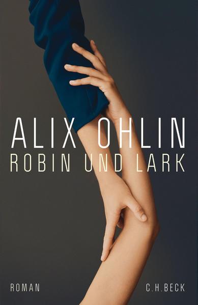 Robin und Lark als Buch (gebunden)