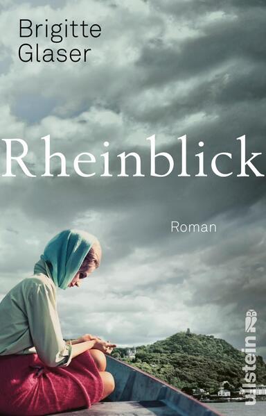 Rheinblick als Taschenbuch