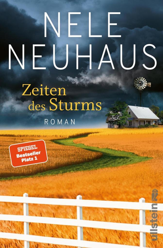 Zeiten des Sturms als eBook epub