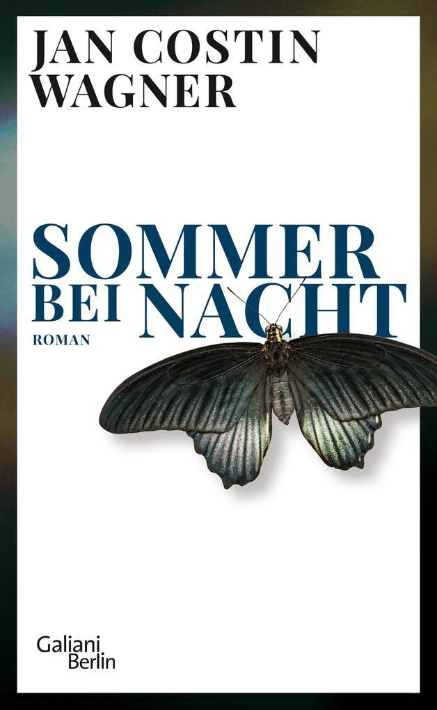 Sommer bei Nacht als Buch (gebunden)