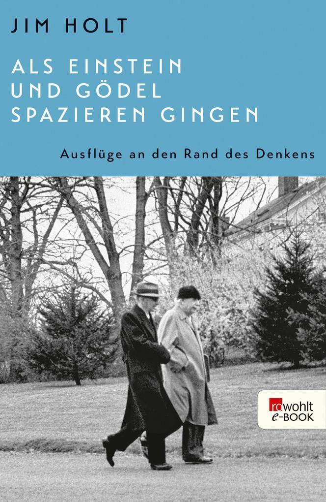 Als Einstein und Gödel spazieren gingen als eBook epub
