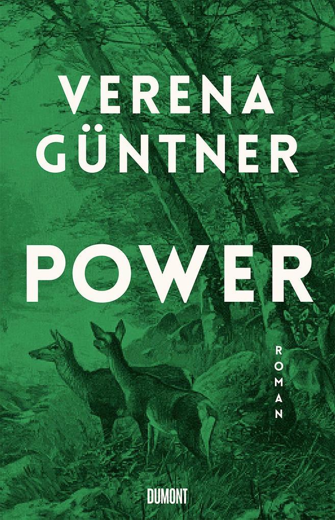 Power als Buch (gebunden)
