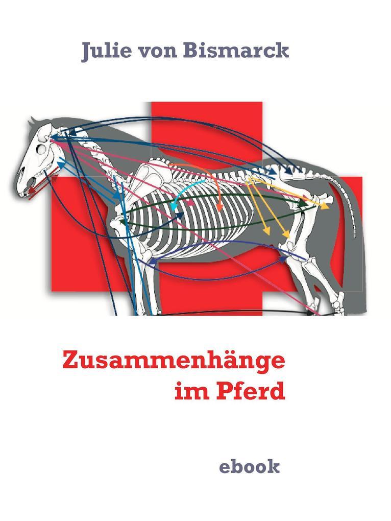 Zusammenhänge im Pferd als eBook epub