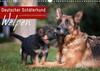 Deutscher Schäferhund - Welpen (Wandkalender 2021 DIN A3 quer)