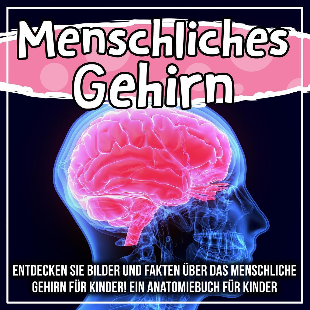 Menschliches Gehirn: Entdecken Sie Bilder und Fakten über das menschliche Gehirn für Kinder! Ein Anatomiebuch für Kinder als eBook epub