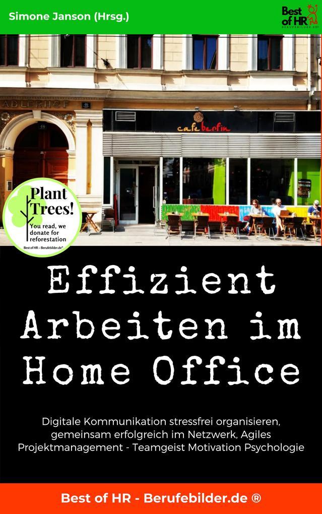 Effizient Arbeiten im Home Office als eBook epub