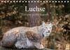 Luchse - Europas größte Katzen (Tischkalender 2021 DIN A5 quer)