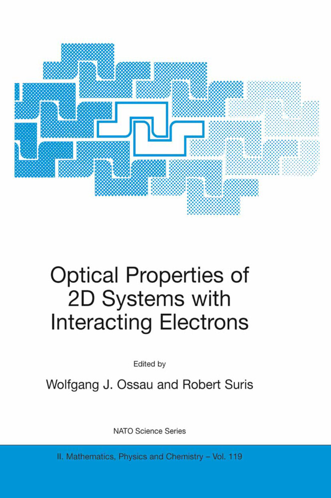 Optical Properties of 2D Systems with Interacting Electrons als Buch (kartoniert)