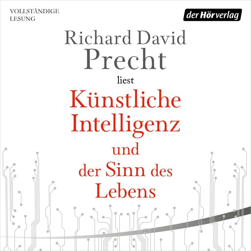 Künstliche Intelligenz und der Sinn des Lebens als Hörbuch Download