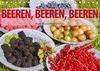 Beeren, Beeren, Beeren (Tischkalender 2021 DIN A5 quer)