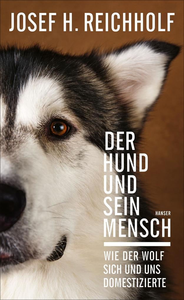 Der Hund und sein Mensch als eBook epub