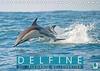 Delfine: Elegante Wellenreiter (Tischkalender 2021 DIN A5 quer)