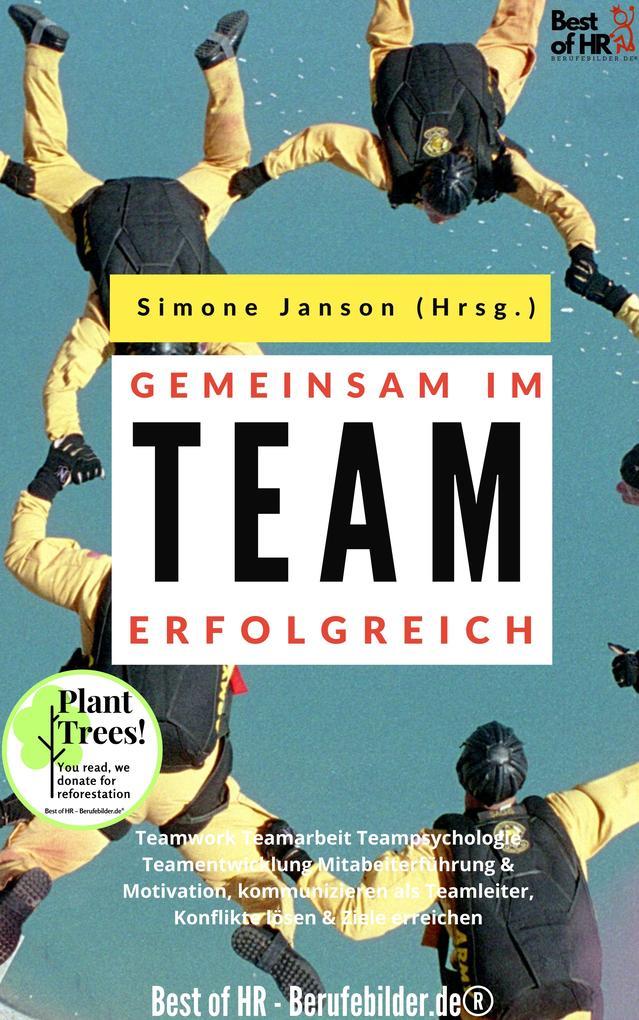 Gemeinsam im Team erfolgreich als eBook epub