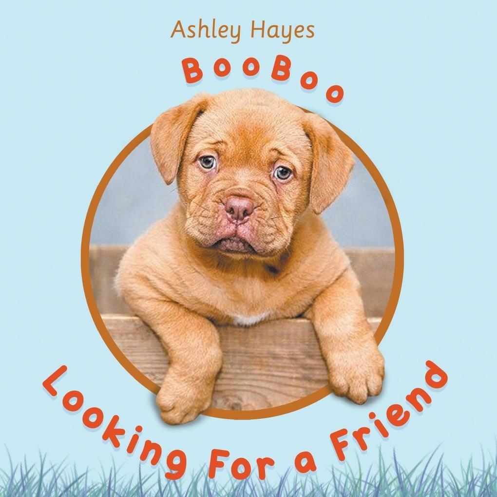 Booboo Looking for a Friend als Taschenbuch