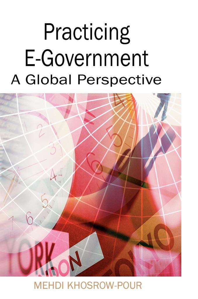 Practicing E-Government als Buch (gebunden)