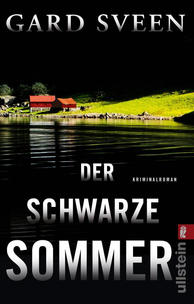 Der schwarze Sommer als eBook epub