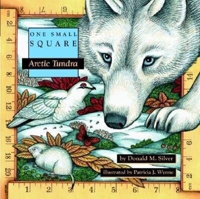 Arctic Tundra als Taschenbuch