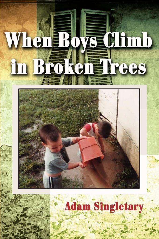 When Boys Climb in Broken Trees als Taschenbuch
