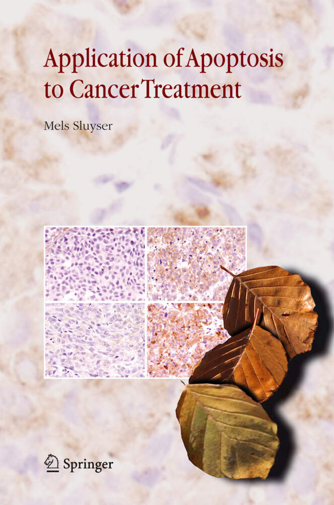 Application of Apoptosis to Cancer Treatment als Buch (gebunden)