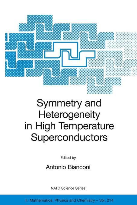 Symmetry and Heterogeneity in High Temperature Superconductors als Buch (gebunden)
