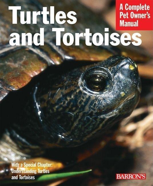 Turtles and Tortoises als Taschenbuch